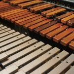 Ksilofon in vibrafon: v čem se razlikujeta?
